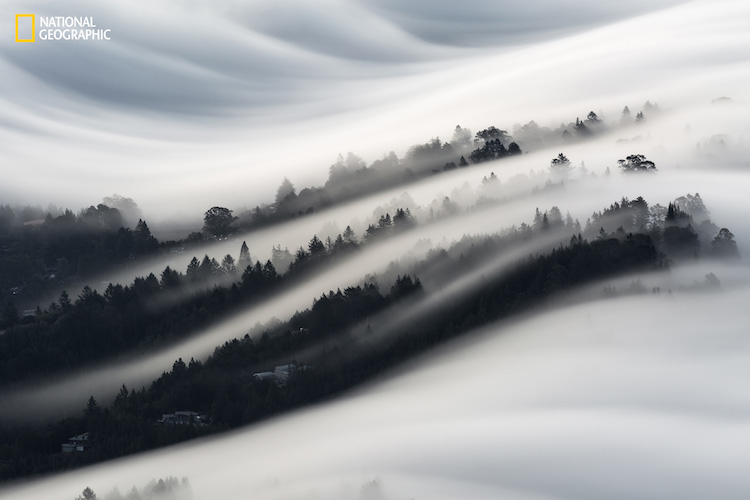 Waves of fog roll over a neighborhood in Mill Valley, California, as seen from the top of Mount Tamalpais.