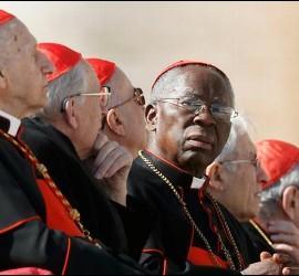 Cardenal Sarah, eb el centro