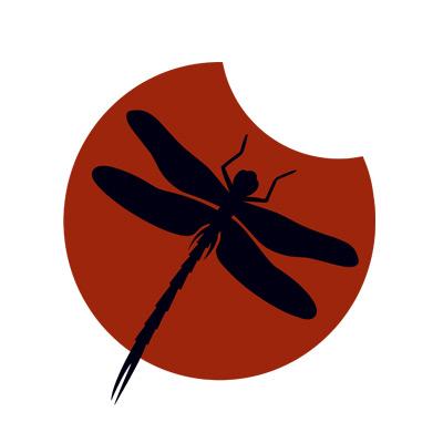 Edition Drachenfliege – die Liebe zu Insekten ist noch eindeutig erkennbar ;)