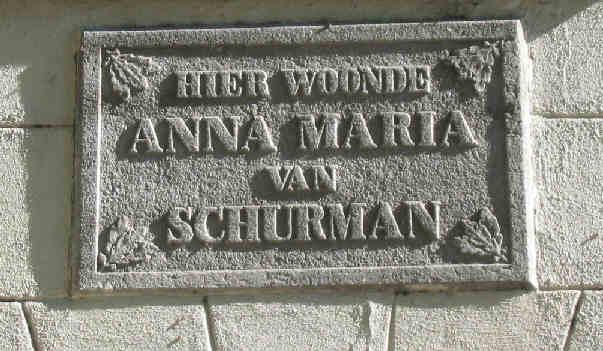 Schurman plaque