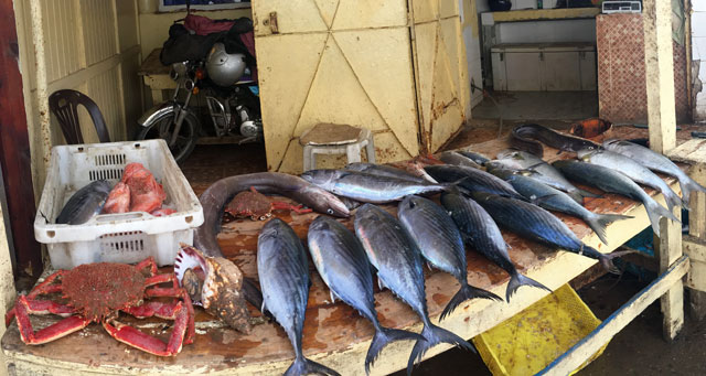 pescaderia