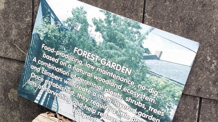 Food forest permacultura urbana