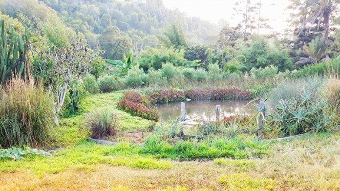 Maungaraeeda Farm Australia