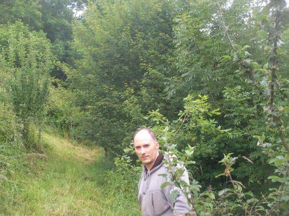 Bosque comestible 2