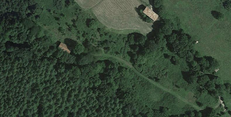 Borda ago 2016