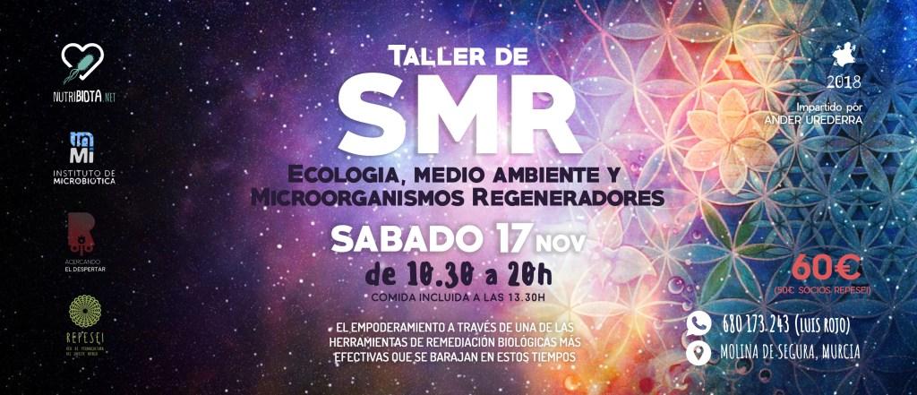 Taller de SMR en Murcia, 17Nov @ Molina de Segura Murcia