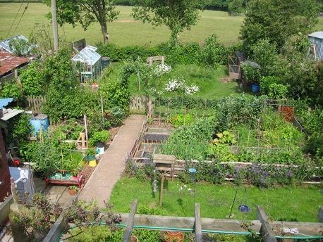 Vegans Living Off The Land Plans For Up Coming Garden