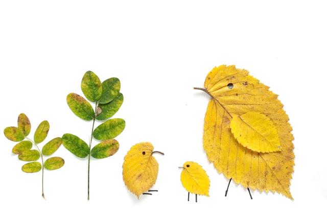 Création de personnages à l'aide de feuilles