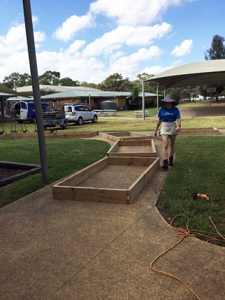 Construction of new garden beds to go where old chook pen was