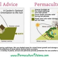 Conventional Advice & Permaculture Advice