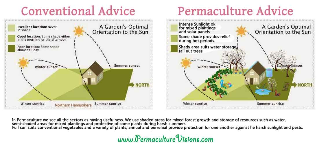 permaculture advice
