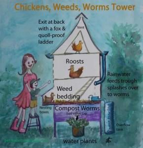 chicken-weeds-worms-tower
