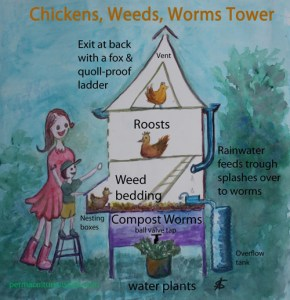 chicken-weeds-worms-tower