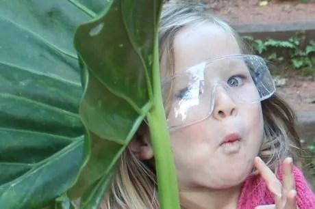 Rose and the big leaf