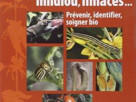 Puceron, mildiou, limace, prévenir, identifier, soigner bio
