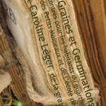 livre pdf permaculture