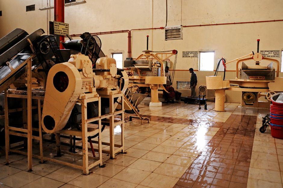 16. Sri Lanka, Nuwara Eliya. Specjalne maszyny służą do rolowania liści - kolejnego etapu procesu wytwarzania herbaty. (Fot. Ania Błażejewska)