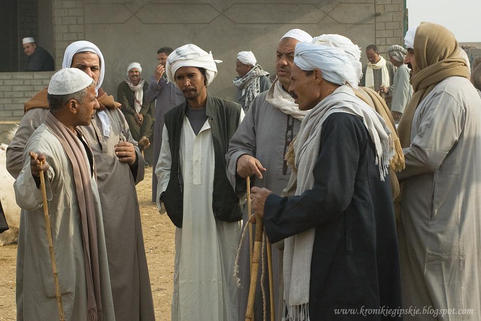 06_Camel_market_Birkasz