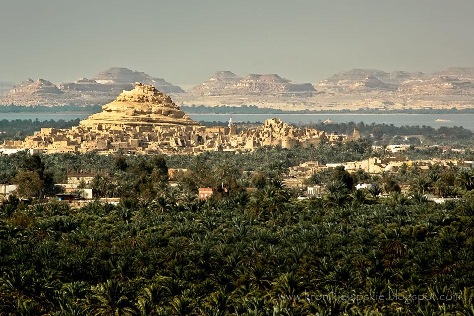 10. EGIPT, Sahara. Na Pustyni Zachodniej jest 5 oaz: Siwa, Baharija, Farafra, Dahla i Kharga. Poza Siwą, pozostałe oazy od czasów starożytnych kontrolowane były przez władców jako ważne punkty postojowe na karawanowych szlakach handlowych. Ptolemejskie świątynie i rzymskie forty świadczą o randze tych miejsc. Aleksander Wielki przebył 300 km pustynnych szlaków, by w wyroczni Amona w Oazie Siwa (jednej z sześciu wyroczni starożytnego świata) dowiedzieć się, że będzie panem całego ówczesnego świata. (Fot. Anna Krukowska)