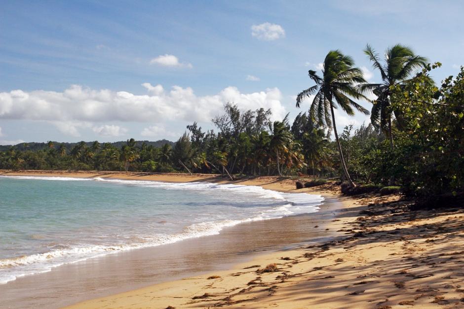 6. DOMINIKANA, Las Terrenas. Spacerując wzdłuż brzegu można przez długi czas nikogo nie spotkać. (Fot. Ewa Serwicka)