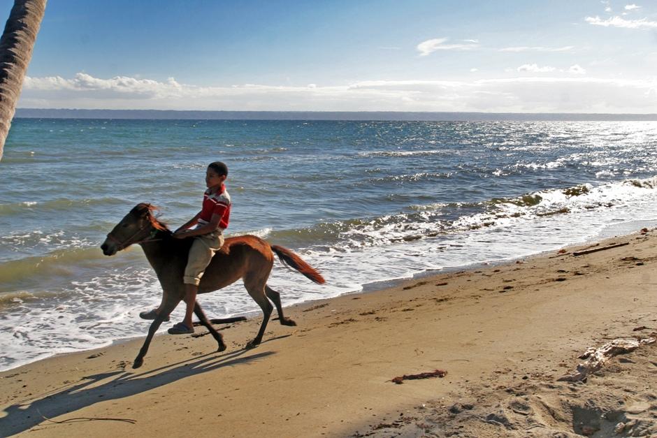 12. DOMINIKANA, Płw. Samana. Zwierzęta na plaży nikogo nie dziwią. Kręci sie tu sporo spokojnych psów, można też jeździć konno. (Fot. Ewa Serwicka)