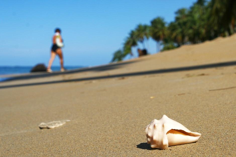 14. DOMINIKANA, Playa Bonita. Przy brzegu można bez trudu znaleźć piękne muszle. (Fot, Ewa Serwicka)