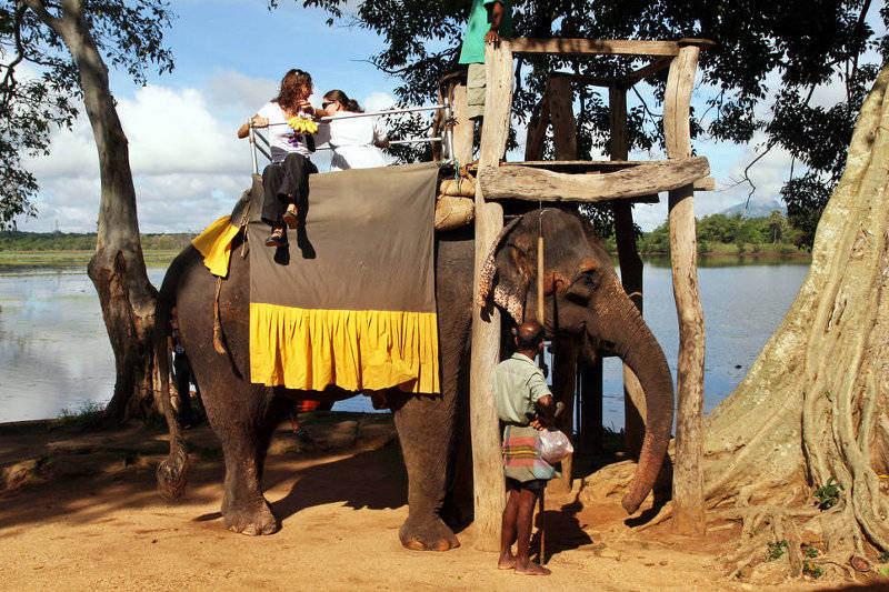 Przejażdżki na słoniach to popularne atrakcje turystyczne w krajach Azji Południowo-Wschodniej. (Fot. Ewa Serwicka)