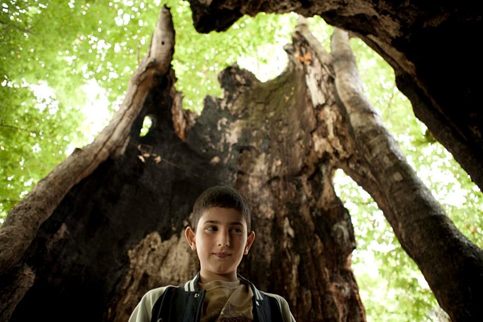 22. GÓRSKI KARABACH. Wnuk generała w pniu 2000-letniego drzewa. Ponoć odbywają się tam wesela. (Fot. Anna Alboth)