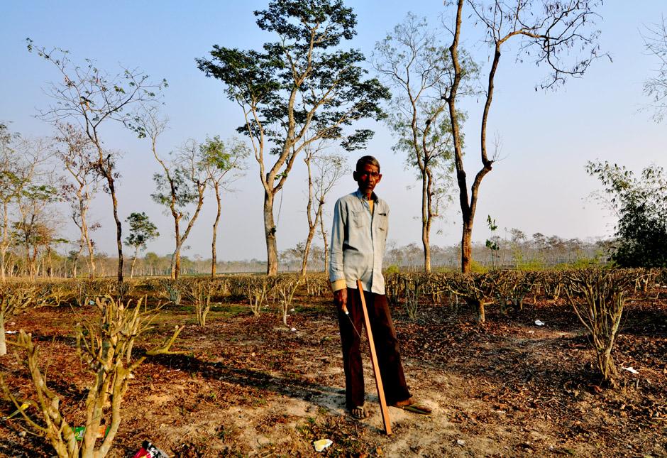 Zdjęcia z Bangladeszu. Mieszkaniec Srimangal