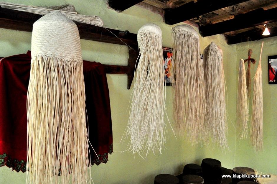 Jak powstaja kapelusze panamskie? Potrzebna jest specjalna palma.