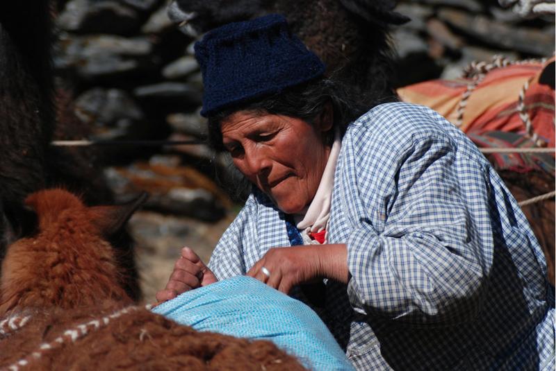 W Andach do transportu wykorzystuje się lamy