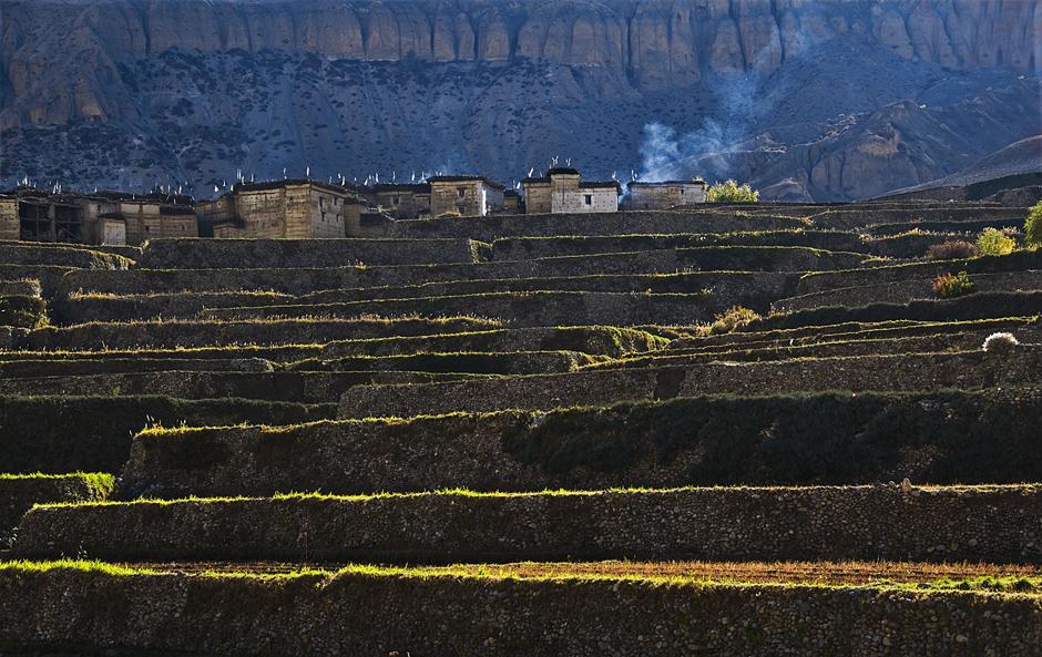 Tarasy uprawne to standradowy widok w Himalajach