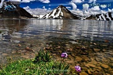 Zdjęcie z gór Pamiru
