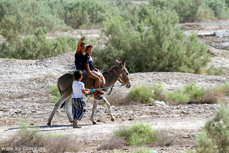 Podróż osiołkiem przez turkmeńską pustynię