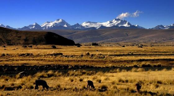 Boliwia, góry Cordillera Apolobamba.