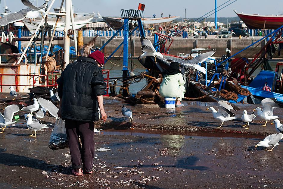 Port w Essaouirze. Zdjęcia z podróży do Maroka