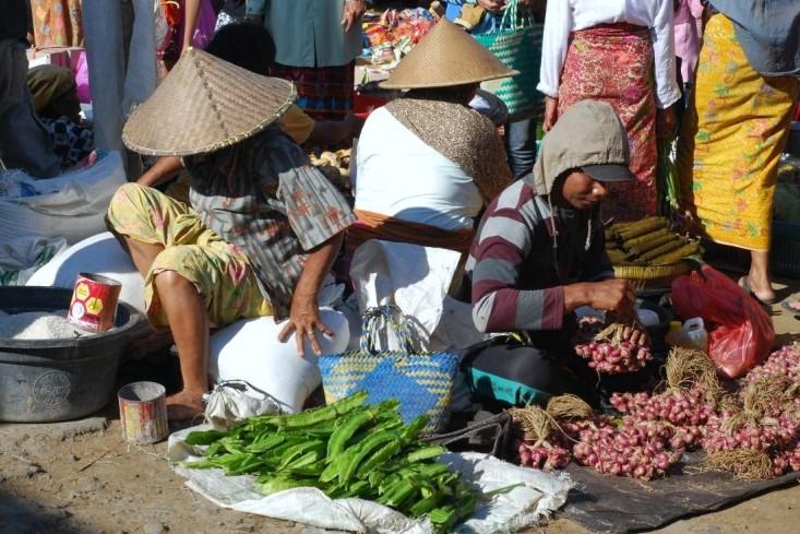 Targ w Lombok