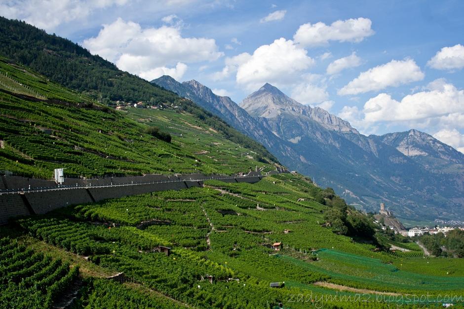 granica Szwajcaria - Francja