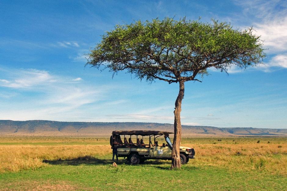 po Masai Mara można poruszać się otwartymi jeepami