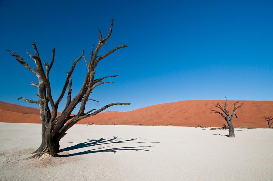 Najs łynniejsza wydma w Namibii - foto