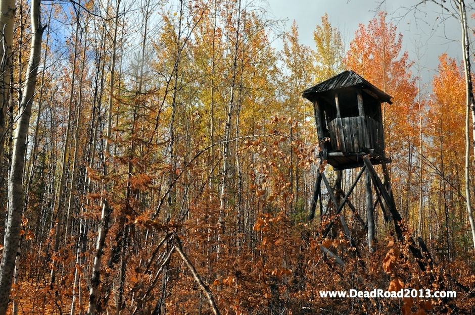 Wieża strażnicza w rosyjskim łagrze. Wyprawa Dead Road 2013