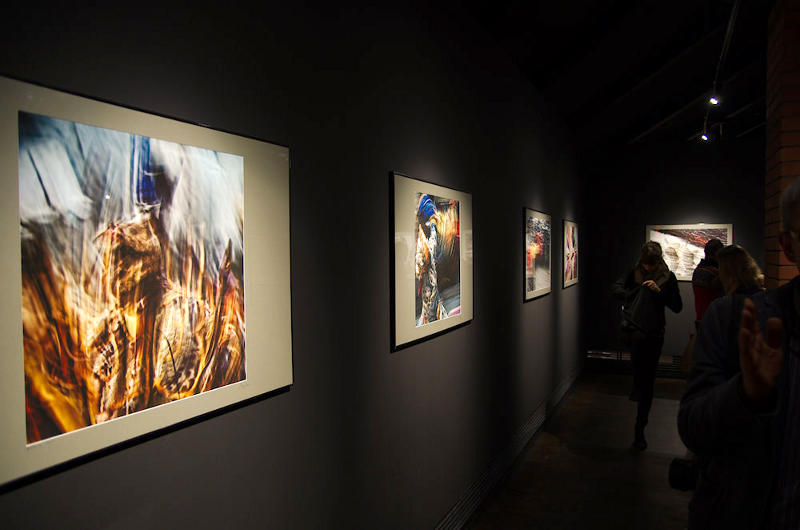Zdjęcia z królestwa Mustang w galerii Manggha