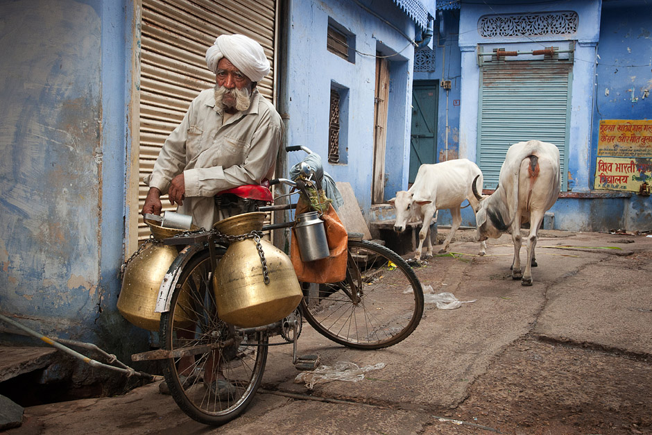 Indyjski mleczarz - foto z podróży