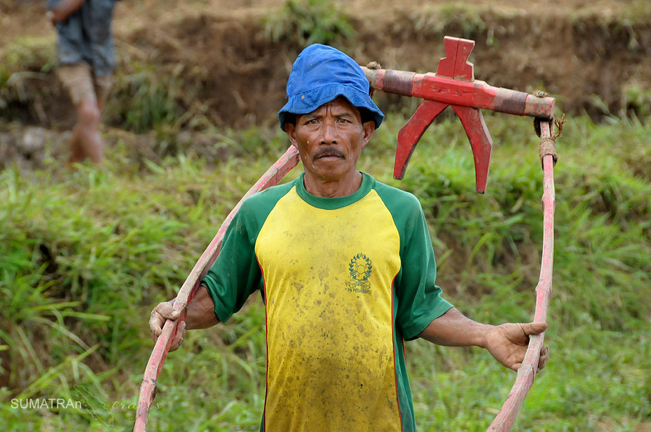 Zdjęcia z zawodów Pacu Jawi w Indonezji