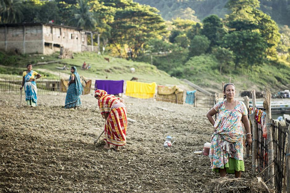 Rolnictwo w Bangladeszu