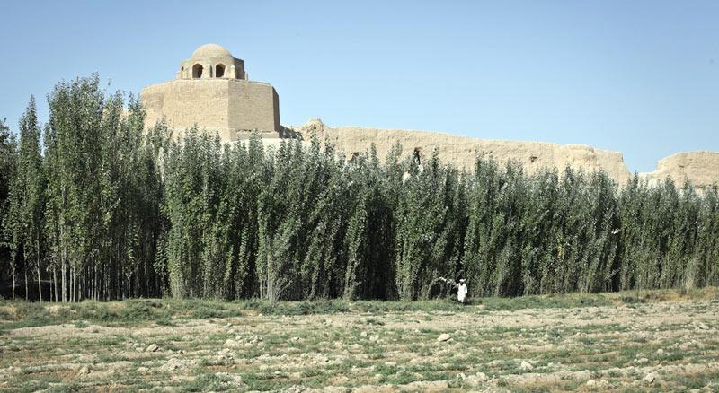 Resztki muru otacvzającego afgański Balch