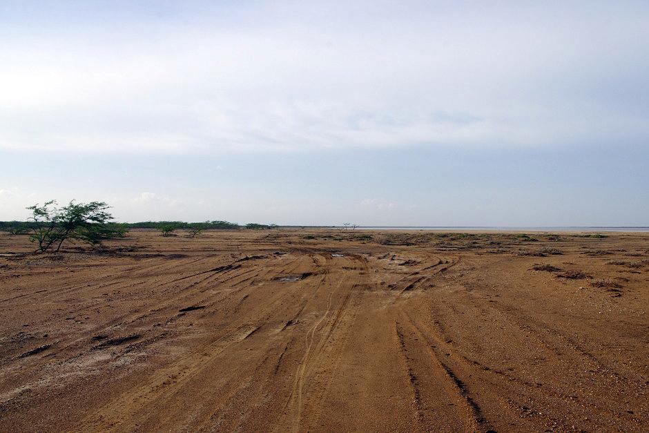 jak znalezc drogę na pustyni