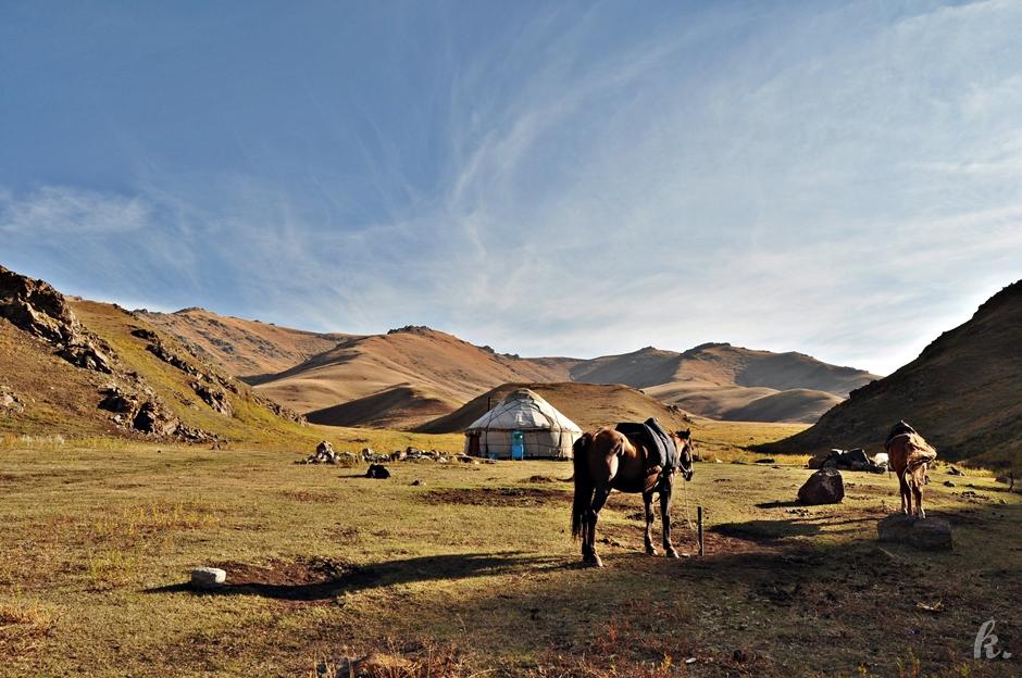Koń to idealne zwierzę na wycieczkę po Azji
