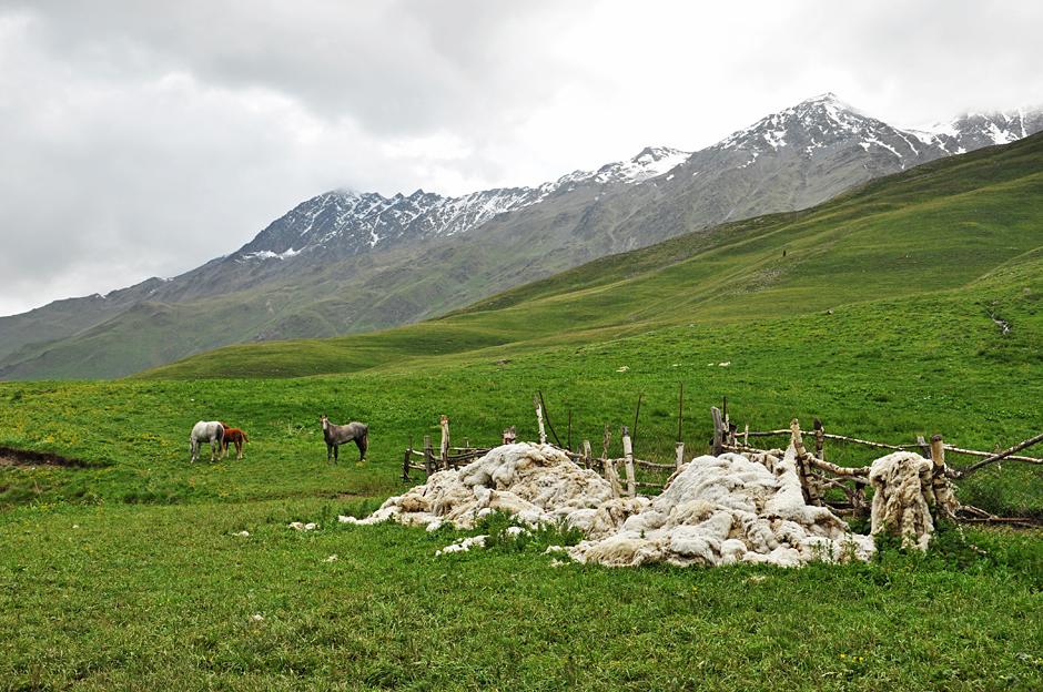 Trekking w Tuszetii - zdjęcia z podróży