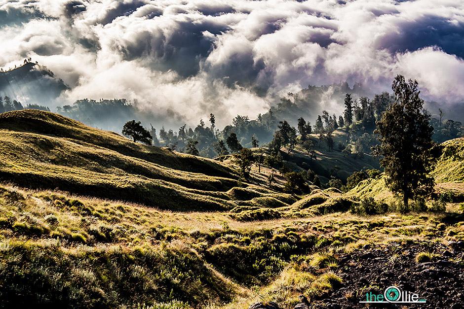 Krajobrazy Indonezji - zdjęcia z podróży